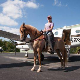 equestrian-center-bsf-2